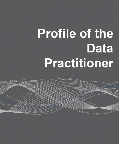 Profile of the Data Practitioner