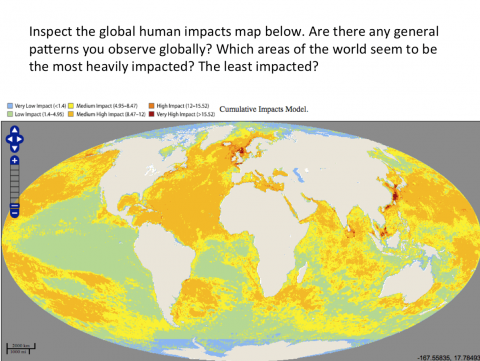 Global human impacts map
